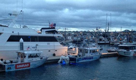 OceanLED Ambassadors, Salt Patrol