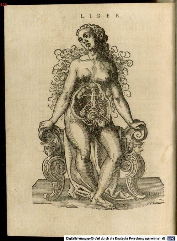 De conceptu et generatione hominis. Rüff, Jacob. 1580.