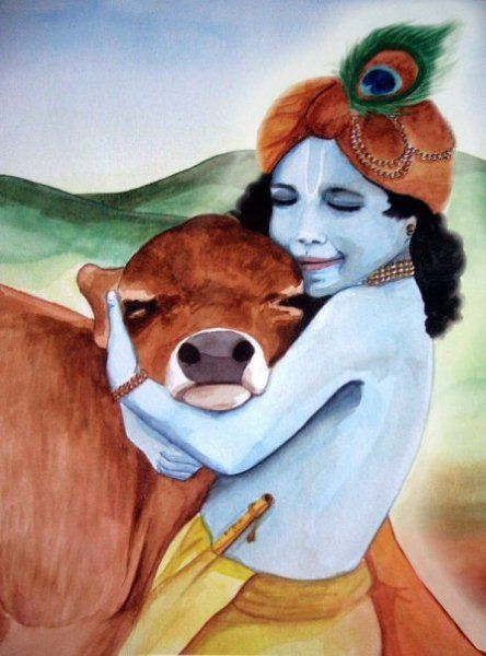 krishna hugging a cow - I don't know who painted this, but it may be from one of the children's books. Clearly, whoever painted it is a pure devotee. Captures all the sweetness!: