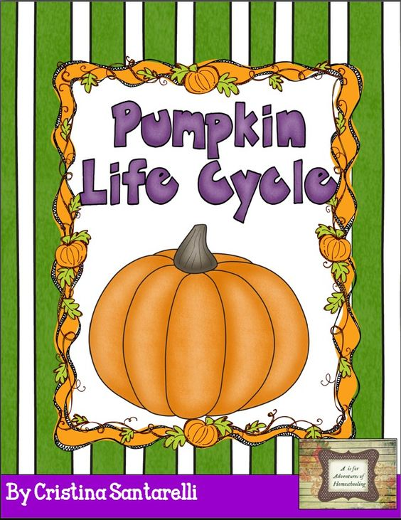 A is for Adventures of Homeschooling: Pumpkin Time!