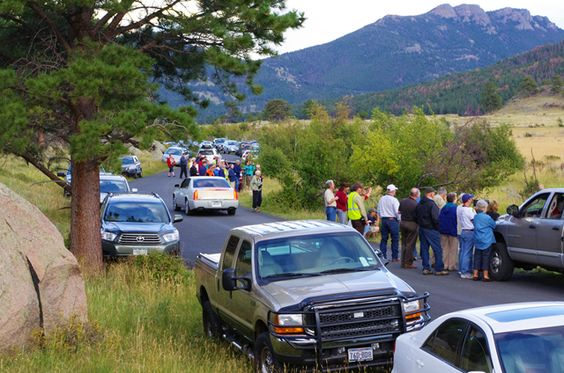 Critter jam – People viewing elk. Moraine Park, Rocky Mountain National Park, September 12, 2011.