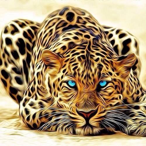 stunning! Leopard . Big cat   Tigers   Pinterest   Katzen ... - photo#45