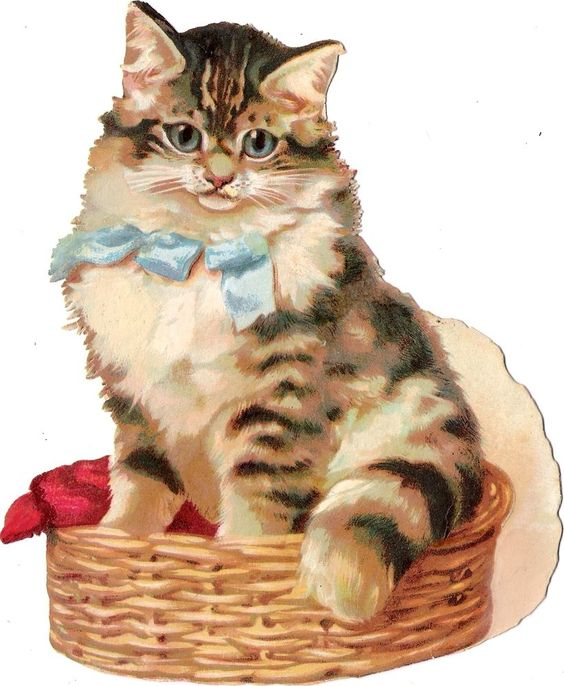 Oblaten Glanzbild scrap die cut chromo Katze  XL 17cm  tiger cat Korb Maguire:
