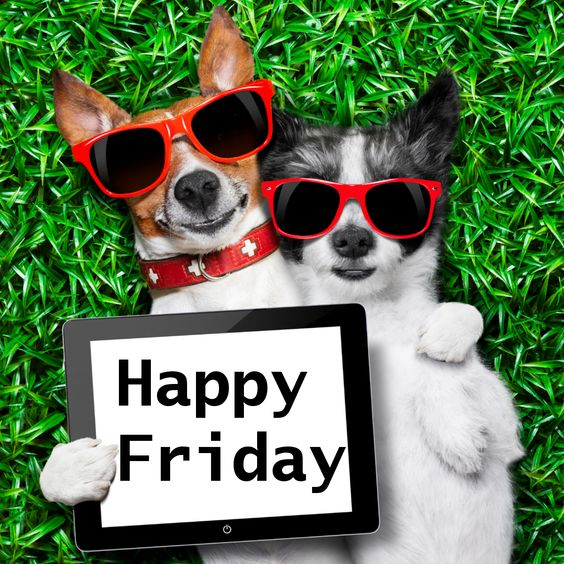 Have a happy Friday and a wonderful weekend!: