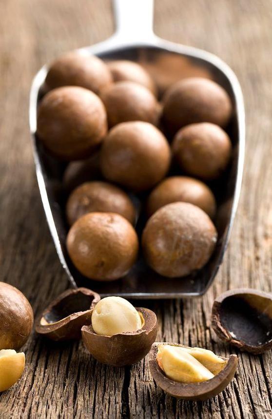 Macadamia Nuts Food Dog Food Recipes Food Photography