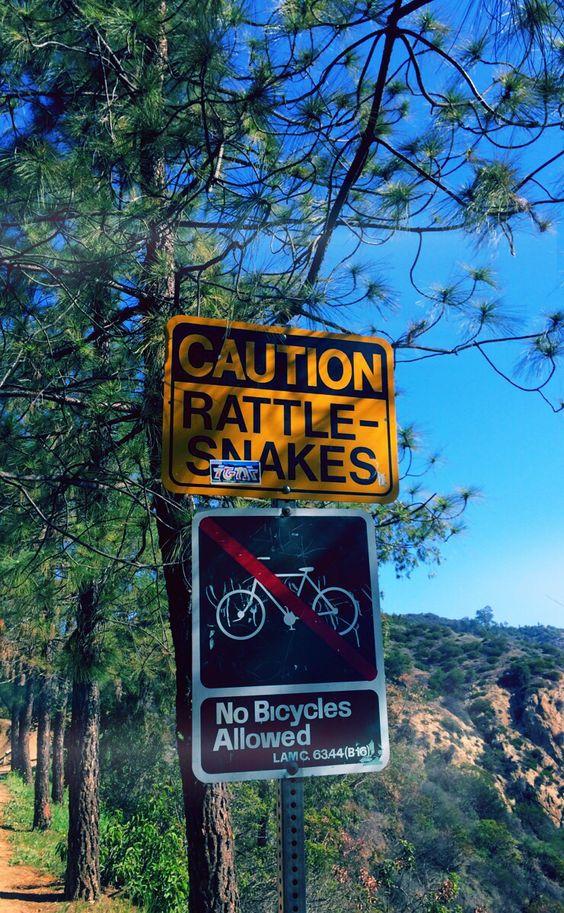 Griffith Park, Los Angeles, USA
