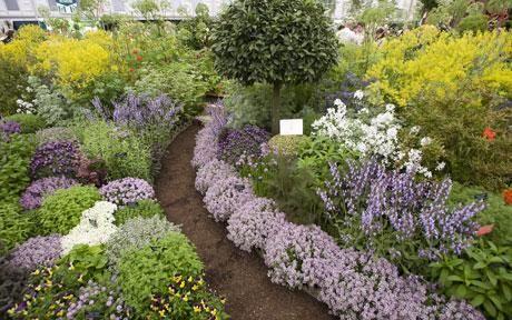 amazing herb garden