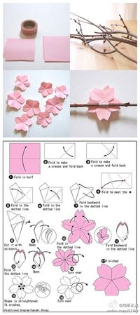 Sakura (cherry blossom) origami