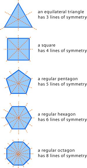 Drawing Lines In Maths : Symmetry d space maths year nsw online