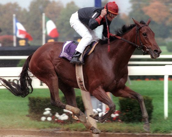 Ogden Phipps' Inside Information and jockey Mike Smith win the G1 Breeders' Cup Distaff at Belmont Park on Oct. 28, 1995. Photo: NYRA/Coglianese Photo