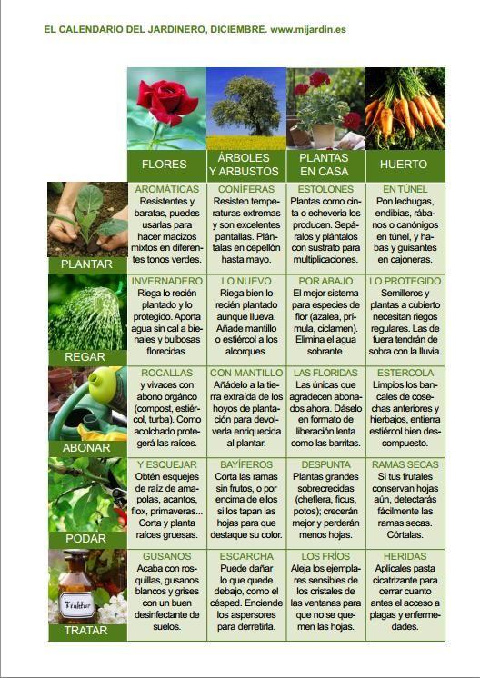 Calendario del jardinero Diciembre