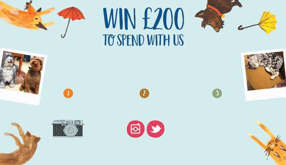#win £200 to spend at White Stuff: Enter #competition here>> http://www.theprizefinder.com/content/win-%C2%A3200-white-stuff-giftcard Ends 30/10/16