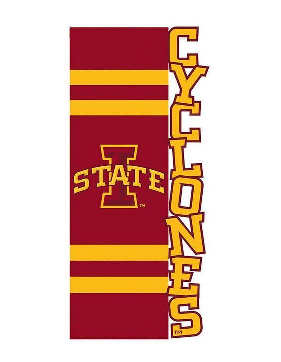 Iowa State Cyclones Applique Sculpted Garden Flag