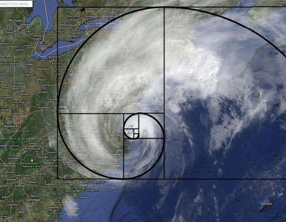 Fibonacci is everywhere