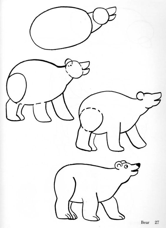 Beer tekenen met kleuters att l ra sig att rita pinterest clip art comment dessiner et - Comment dessiner un ours ...