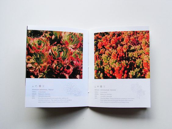 Royal Botanic Gardens Melbourne by rachel         hui peng, via Behance