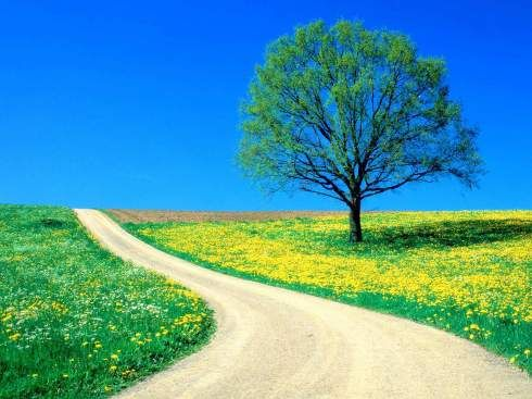 A person often meets his destiny on the road he took to avoid it    ~ Jean de La Fontaine