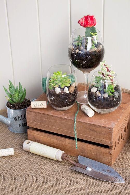 DIY Wine Glass Terrariums | Cambria Wines