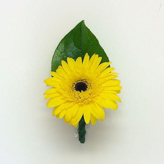 Yellow gerbera daisy boutonnière.