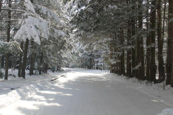 Snow decoration