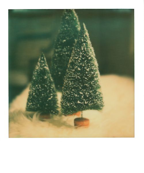 have yourself a merry little christmas.    ann mcgarry