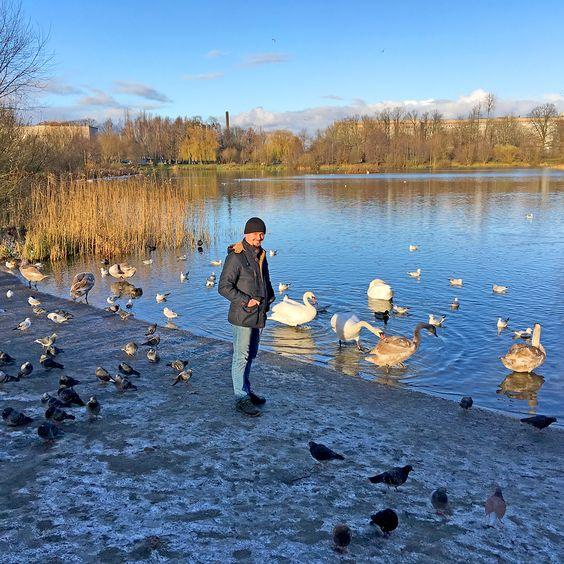 Птичий двор на кормёшке, Летнее озеро, р-н Понарт. Фото: Evgenia Shveda