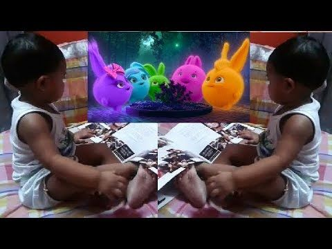 Kiwi Curiously Watching Sunny Bunnies Cartoon Channel Funny Kids Best R Funny Happy Birthday Pictures Christmas Greetings Quotes Funny Cartoon Kids
