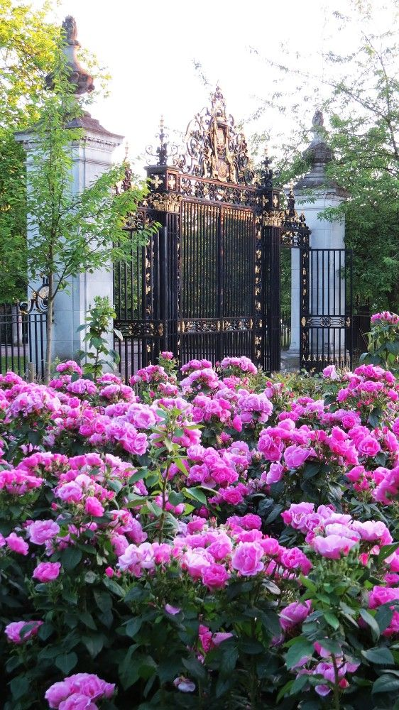 Gates to Queen Mary's Rose Garden in London's Regent Park