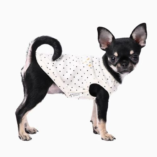 Becoming Studio Mini Dot Basic Dog T Shirt Dog T Shirt Dognpet