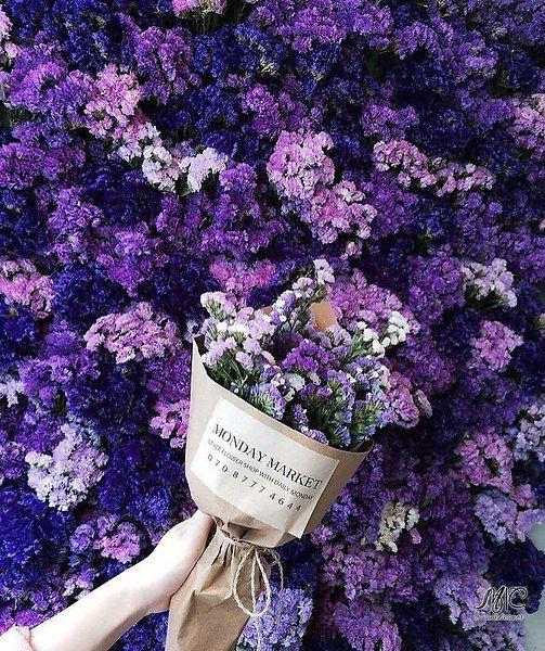 Purple Flowers Bouquet Purple Flower Bouquet Flower Aesthetic Lavender Aesthetic