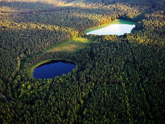 Due to the different composition of the water; one lake is green, and the other - blue: