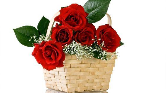 букет, красные, корзина, Розы, природа, цветы, цветок