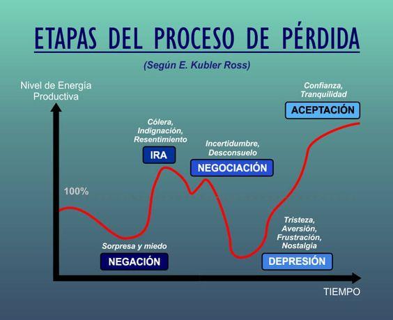 etapas del proceso de perdida - kubler ross: