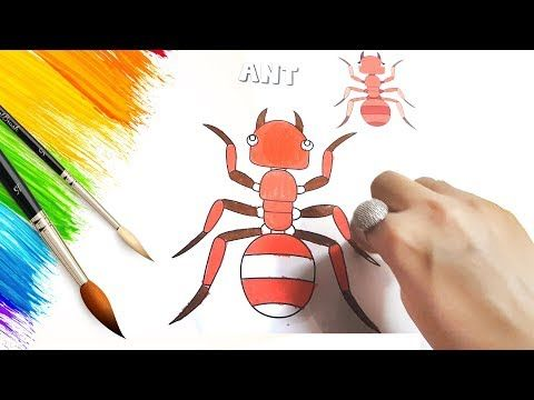 Drawings Coloring Book Pages Kids Learning Videos Videos For Kids Ant Colouring Videos Youtube Kids Learning Videos Coloring Books Coloring Book Pages