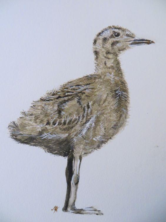 Baby Seagull - original painting £18.00