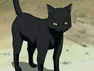 Yoruichi as a Cat