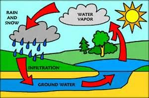 Evaporation Water Cycle For Kids