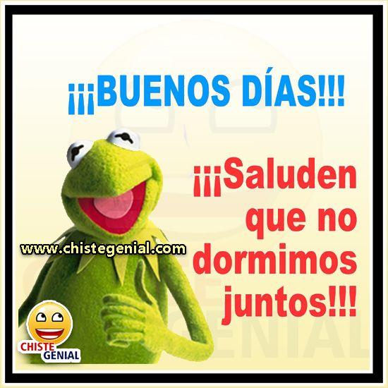 Chistes Cortos Buenos Dias Saluden Que No Dormimos Juntos Chistes Humor Chistegenial Humor Funny Quotes Funny