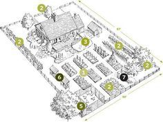 Start Your Own Backyard Homestead -- The Backyard Homestead by Madigan, Carleen -- Free eBooks online Reading