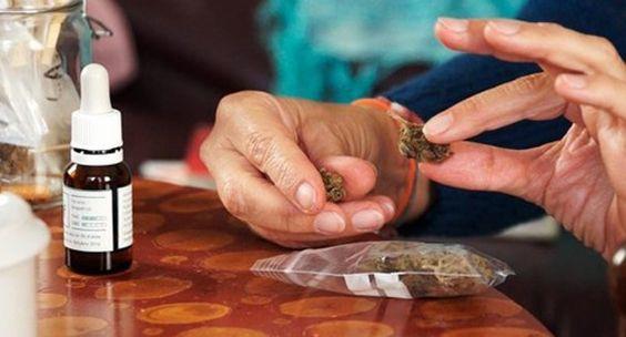 Marihuana, entre el veneno y el fármaco: el reportaje televisivo sobre cannabis medicinal - http://growlandia.com/marihuana/marihuana-entre-el-veneno-y-el-farmaco-el-reportaje-televisivo-sobre-cannabis-medicinal/