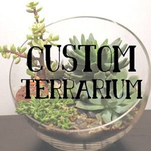 I would ADORE a custom terrarium from Terri Planty - the terrariums with the adorable mini scenes in them