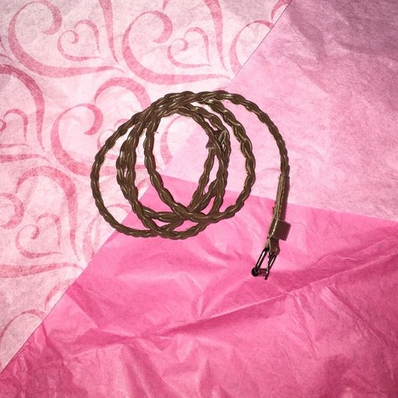 Brown skinny braided belt Good condition. Worn once. Other
