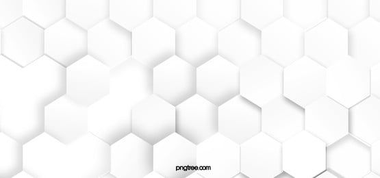 Hexagonal White Background White Background White Background Images White Photo Frames