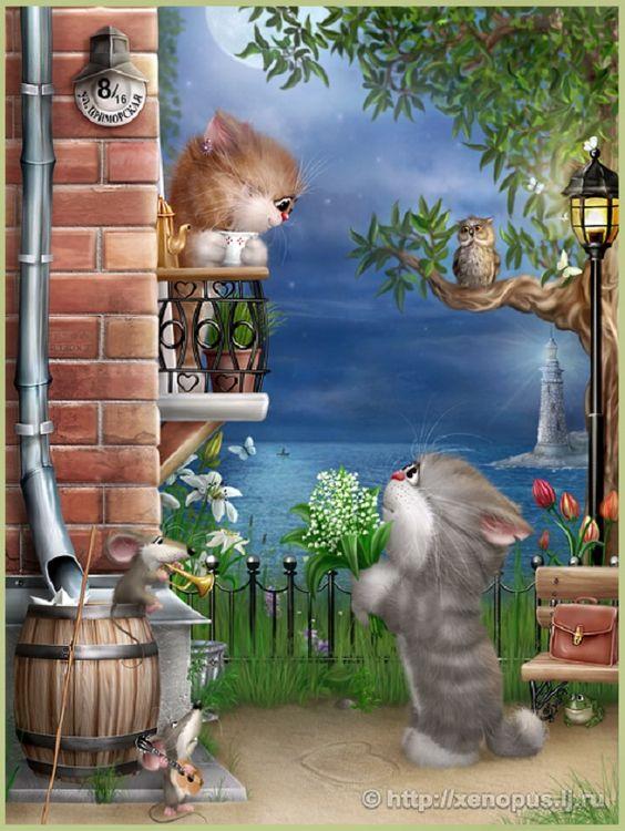 кот поёт серенаду