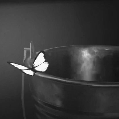 Image via We Heart It http://weheartit.com/entry/204114026 #black #butterflyeffect #lifeisstrange