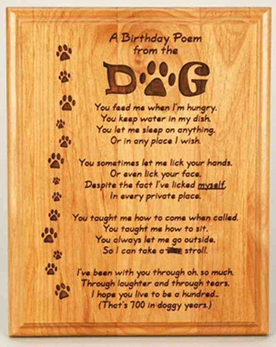 Happy Birthday Dog Quotes ~ Happy birthday quotes for dogs from the