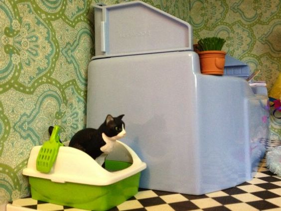 marre de l 39 odeur de la liti re de votre chat mettez du talc comment and pendants. Black Bedroom Furniture Sets. Home Design Ideas