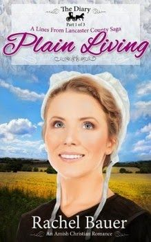 The eReader Cafe - Free Kindle Book, #kindle, #ebooks, #books, #romance, #amish, #rachelbauer http://www.theereadercafe.com/