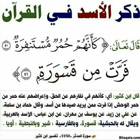Pin By Essam Sayed Mohamed On Quran Quran Tafseer Islam Quran Quran