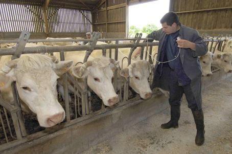 L'article 20 du projet de loi d'avenir de l'agriculture - Le Coq Vert